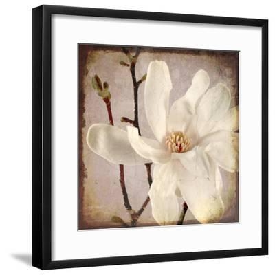 Paper Magnolia Closeup-LightBoxJournal-Framed Giclee Print
