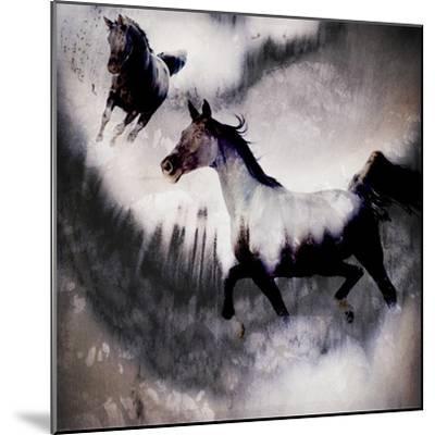 Black Mare - Dream 3-LightBoxJournal-Mounted Giclee Print