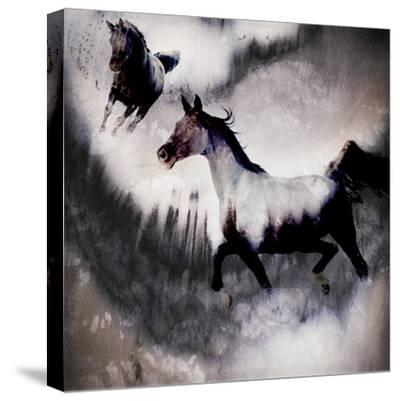 Black Mare - Dream 3-LightBoxJournal-Stretched Canvas Print