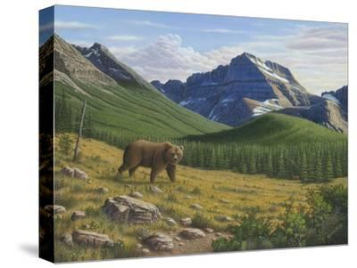 Heading Down the Slope-Robert Wavra-Stretched Canvas Print