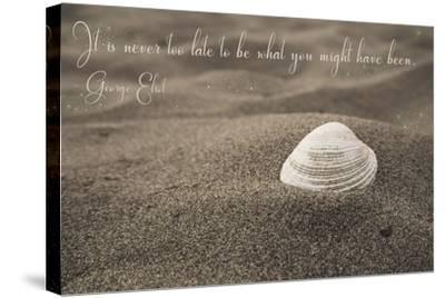 Never Too Late-Tina Lavoie-Stretched Canvas Print