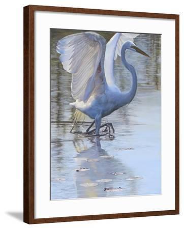 Bird-Rusty Frentner-Framed Giclee Print