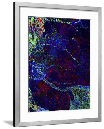 Tidal Pool-MusicDreamerArt-Framed Giclee Print
