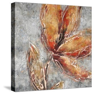 Ashanti II-Michael Brey-Stretched Canvas Print