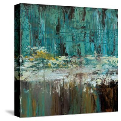 Deep Waters I-Jack Roth-Stretched Canvas Print