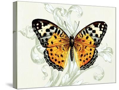 Butterfly Theme IV-Susan Davies-Stretched Canvas Print