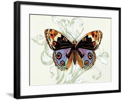 Butterfly Theme I-Susan Davies-Framed Art Print