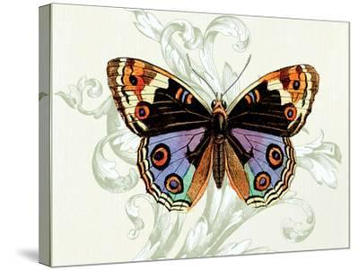 Butterfly Theme I-Susan Davies-Stretched Canvas Print