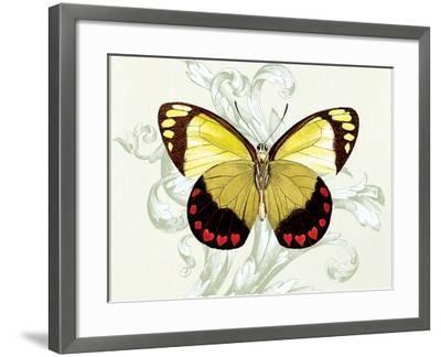 Butterfly Theme II-Susan Davies-Framed Art Print