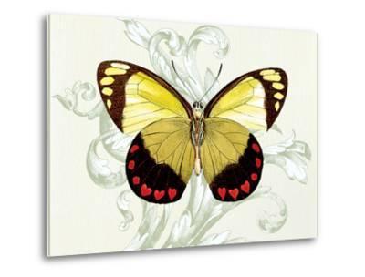 Butterfly Theme II-Susan Davies-Metal Print