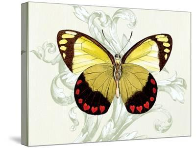 Butterfly Theme II-Susan Davies-Stretched Canvas Print