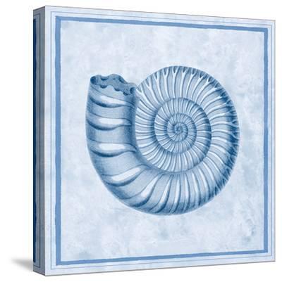 Blue Nautilus B-Sarah E. Chilton-Stretched Canvas Print