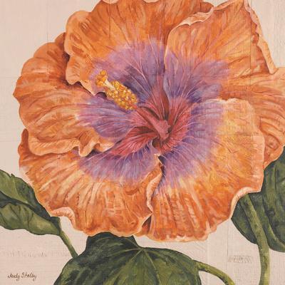 Island Hibiscus II-Judy Shelby-Framed Art Print