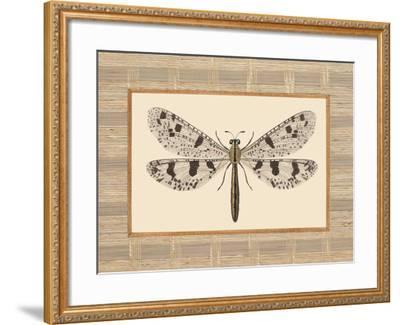 Delicate Dancer III-Sarah E. Chilton-Framed Art Print
