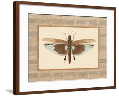 Delicate Dancer IV-Sarah E. Chilton-Framed Art Print