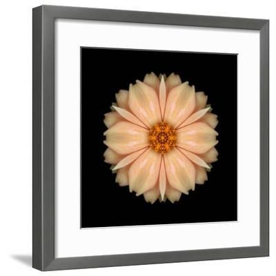 Kaleidoscope Peach Dahlia-David Bookbinder-Framed Art Print