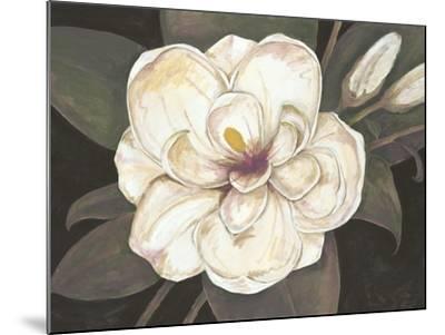 Southern Magnolia-Filippo Ioco-Mounted Art Print