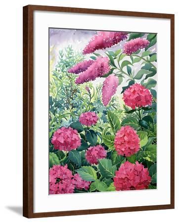 Garden Hydrangeas and Buddleia-Christopher Ryland-Framed Giclee Print