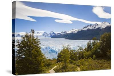 A View Looking Through the Trees of the Top of the Perito Moreno Glacier in Argentina-Mike Theiss-Stretched Canvas Print