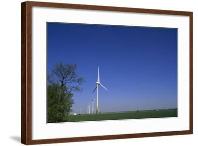 A Row of Windmills in a Field-Norbert Rosing-Framed Photographic Print
