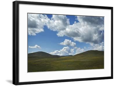 Spring Wildflowers on Oregon Hills-Macduff Everton-Framed Photographic Print
