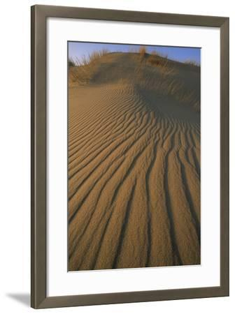 Sand Dune with Ripples Created by Wind-Norbert Rosing-Framed Photographic Print
