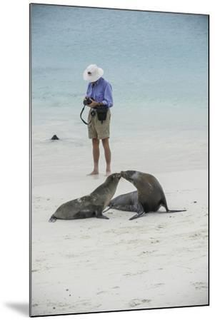 Tourists and Curious Galapagos Sea Lions Mingle on the Beach-Jad Davenport-Mounted Photographic Print
