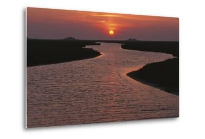 Dwelling Mounds in the Wadden Sea at Sunset-Norbert Rosing-Metal Print