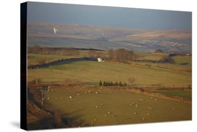 The Hills of Challacombe Common in Early Winter, Near Blackmoor Gate, Exmoor National Park-Nigel Hicks-Stretched Canvas Print