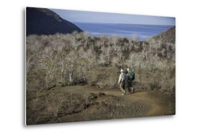 Tourists Hiking Near Darwin Lake at Tagus Cove-Jad Davenport-Metal Print