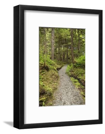 Path Inside Tongass National Forest-Macduff Everton-Framed Photographic Print