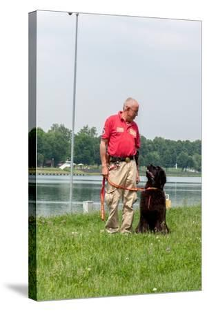 A Newfoundland Dog Trained for Rescue at Sea, with an Instructor at a Lake Near Milan-Lori Epstein-Stretched Canvas Print