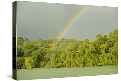 A Rainbow over Barro Colorado Island, Panama-Jonathan Kingston-Stretched Canvas Print
