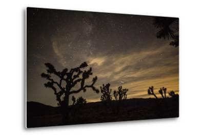 The Star-Filled Night Sky over Lost Horse Valley in Joshua Tree National Park-Kent Kobersteen-Metal Print