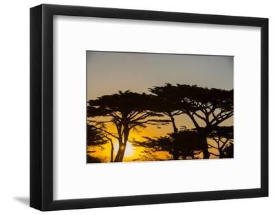 Sunrise in Monterey Bay, California-John Burcham-Framed Photographic Print