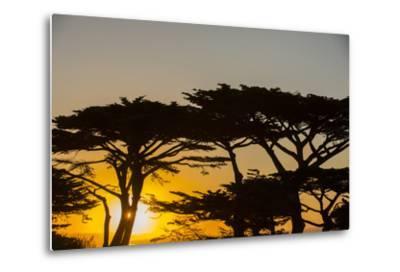 Sunrise in Monterey Bay, California-John Burcham-Metal Print