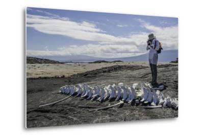 A Tourist Photographing a Whale Skeleton on the Beach-Jad Davenport-Metal Print
