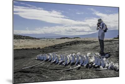 A Tourist Photographing a Whale Skeleton on the Beach-Jad Davenport-Mounted Photographic Print