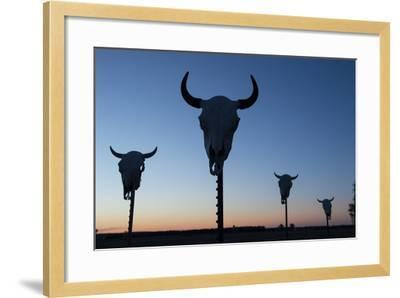 Four Bison Skulls on Posts at Dusk-Joel Sartore-Framed Photographic Print