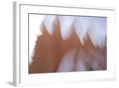 Abstract of Eroded Rock in Bryce Canyon National Park-Philip Schermeister-Framed Photographic Print