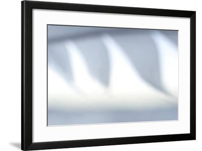 Abstract of Gull's Feather in the Mono Basin National Forest-Philip Schermeister-Framed Photographic Print