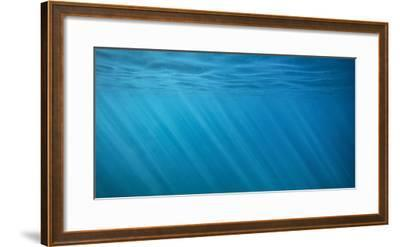 Rays of Light Below the Ocean Surface Off the Island of Maui-Chad Copeland-Framed Photographic Print