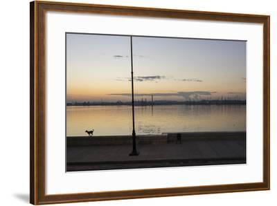 A Dog Runs Along the Harbor Wall in Havana, Cuba-Stephen Alvarez-Framed Photographic Print