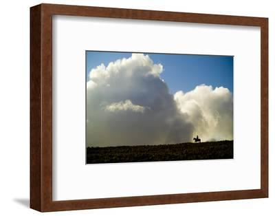 Silhouette of a Cowboy Riding across a Ridge with a Cumulonimbus Cloud in the Background-Jonathan Kingston-Framed Photographic Print