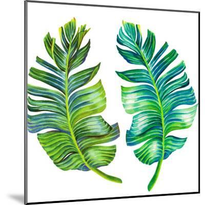 Single Isolated Banana Leaf-rosapompelmo-Mounted Art Print