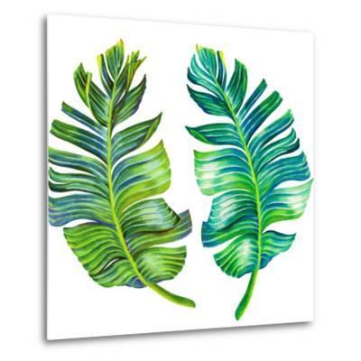 Single Isolated Banana Leaf-rosapompelmo-Metal Print
