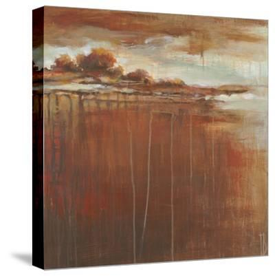 Clearing to Blue I-Terri Burris-Stretched Canvas Print