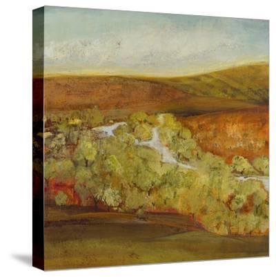 Autumn Saffron II-Jill Martin-Stretched Canvas Print