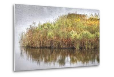 Marsh 2-Lillis Werder-Metal Print