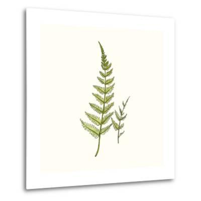 Watercolor Forest Ferns-Natasha Marie-Metal Print